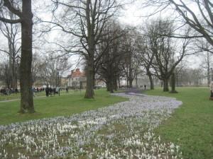Arrival of Spring Karlstad, Sweden